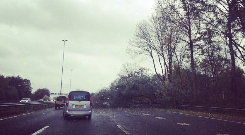 Fallen tree on A9 highway near Amstelveen blown over by first autumn storm of the season, 20 Nov 2016