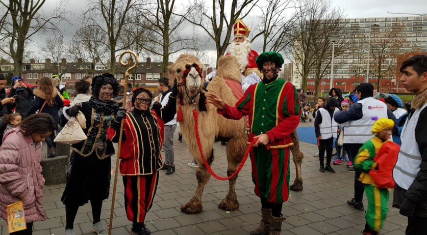Sinterklaas arrives in Amsterdam-Osdorp on a camel, 18 Nov 2017