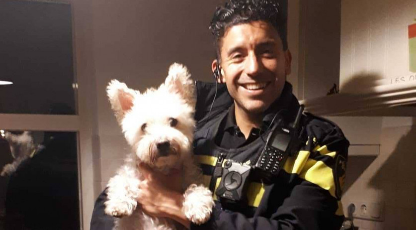 Dog Frodo helped the police catch three burglars in Hardewijk, October 2020