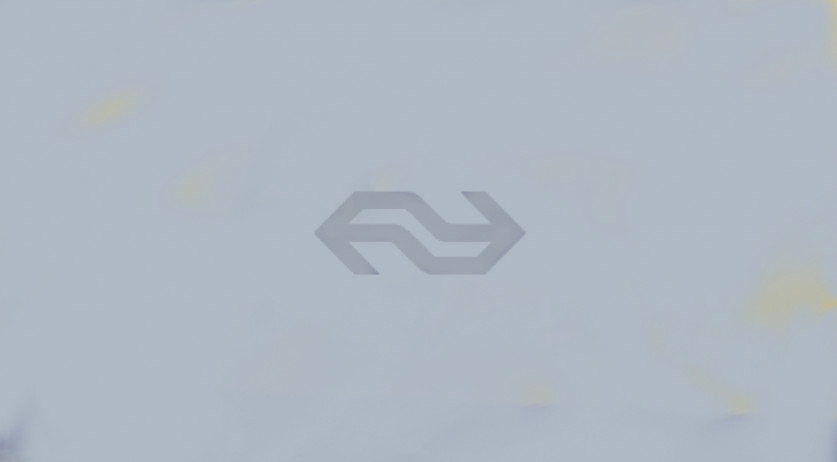 NS Logo in grey against a silver backdrop