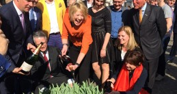 Amsterdam Tulp Festival: Tulips everywhere