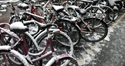 Bicycles dusted with snow in Amsterdam, 22 Jan 2019
