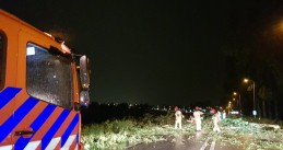 Firefighters working to clear fallen trees and branches from the N522 in Noord-Holland, 6 June 2019
