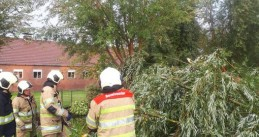 Storm damage - Firefighters dealing with a fallen tree in Oudewater, 27 August 2019