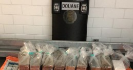 Nearly 100 kilos of cocaine found in a melon shipment from Brazil at a fruit company in IJsselmonde, 25 Nov 2019