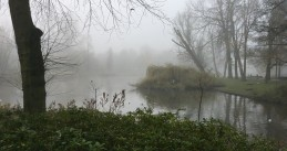 A foggy, chilly morning in Amsterdam's Oosterpark. 9 Dec. 2020