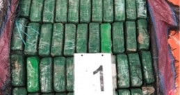 1,000 kilos of cocaine found at the port of Rotterdam in a banana shipment from Ecuador, 7 February 2020
