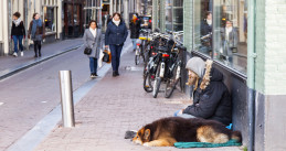A man sitting on an Amsterdam street with a dog on top of their sleeping bag