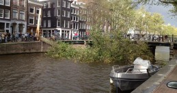 A tree crashed over the Herengracht in Amsterdam